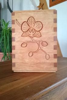 Sonderanfertigung-Orchidee