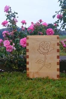 27-Urne-Rose